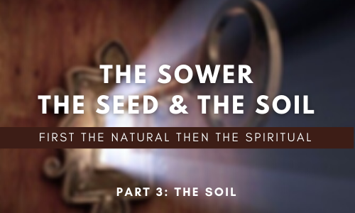 The Sower, The Seed & The Soil
